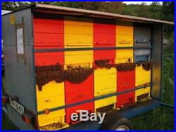 Beekeeping National Slovenian AZ beehive 30-frames, 3 story with 2- feeder